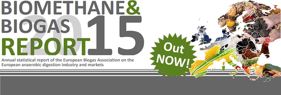 Biogas and Biomethane Report 2015 published!