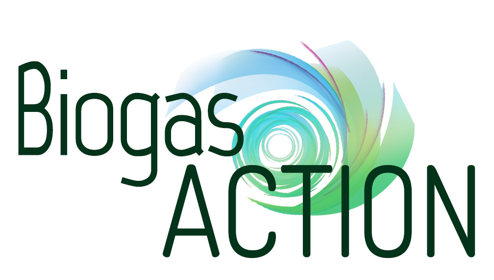 Unlocking the potential of biogas for the energy transition