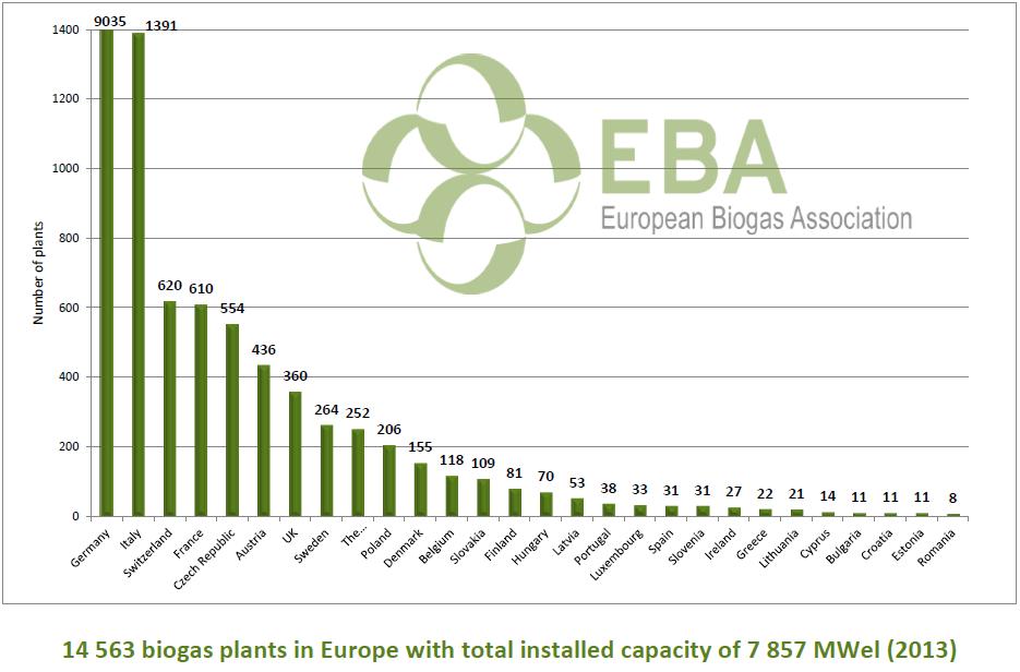 Biogas graph 2013